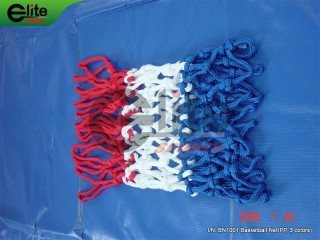 BN1001-Baseketball Net,PP,12 Hooks,8 Sections